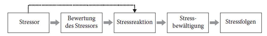stressgeschehen stressbewältigung
